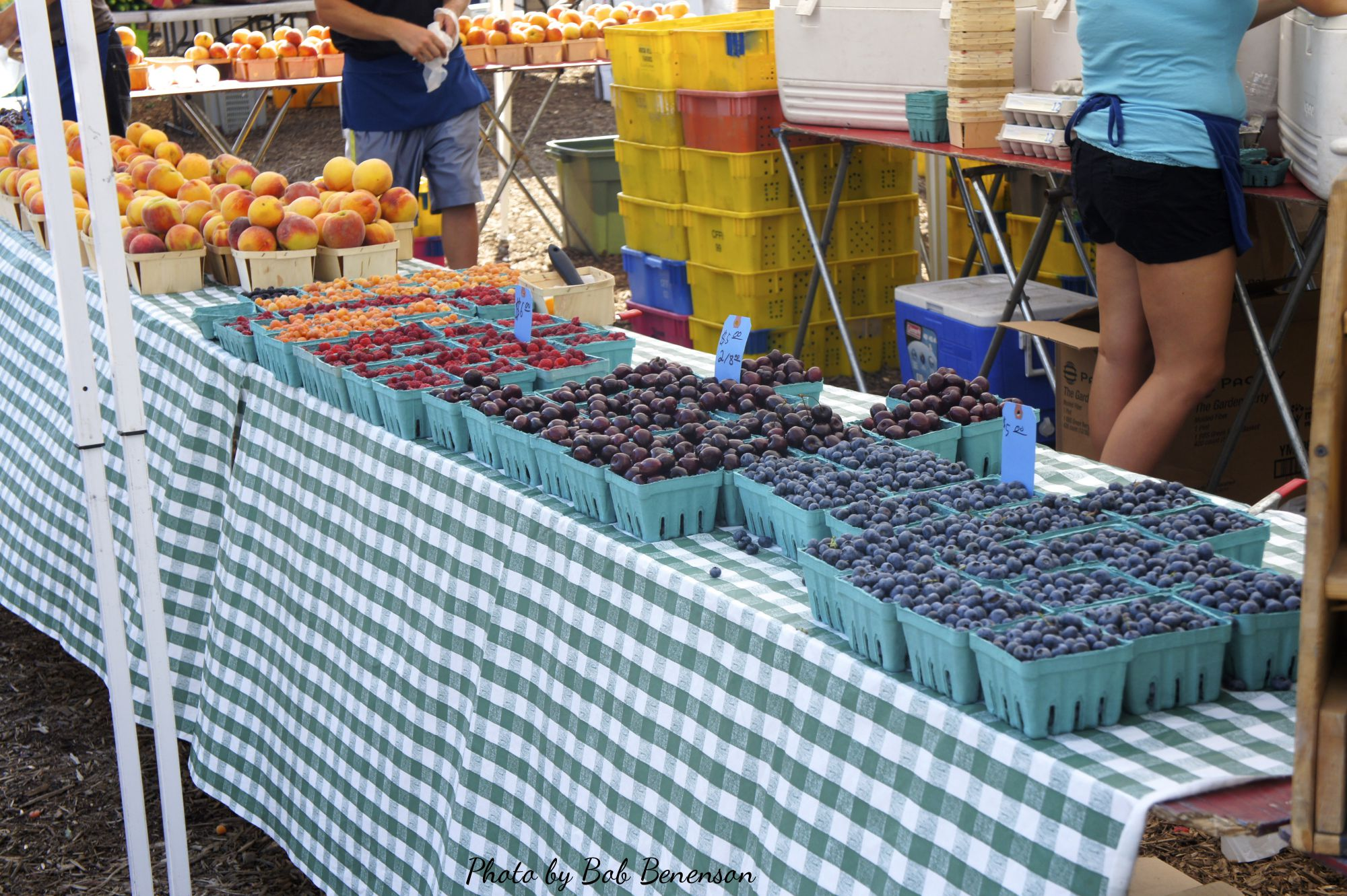 Fruit for sale at Chicago's Green City Market