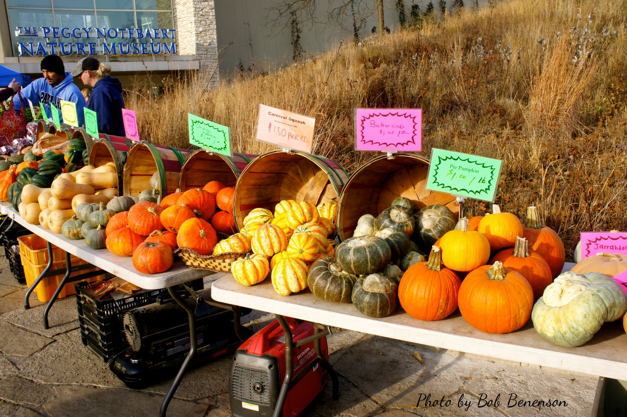 Pumpkins, squash and gourds as Chicago's Green City Market moves into its winter season