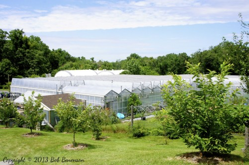 The extensive greenhouses at Stone Barns Center