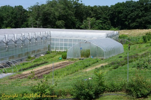 One of the indoor growing facilities at Stone Barns Center is a hoop house that is movable on tracks.