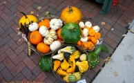 Dane County Farmers Market: Photo Gallery of a Capitol Idea