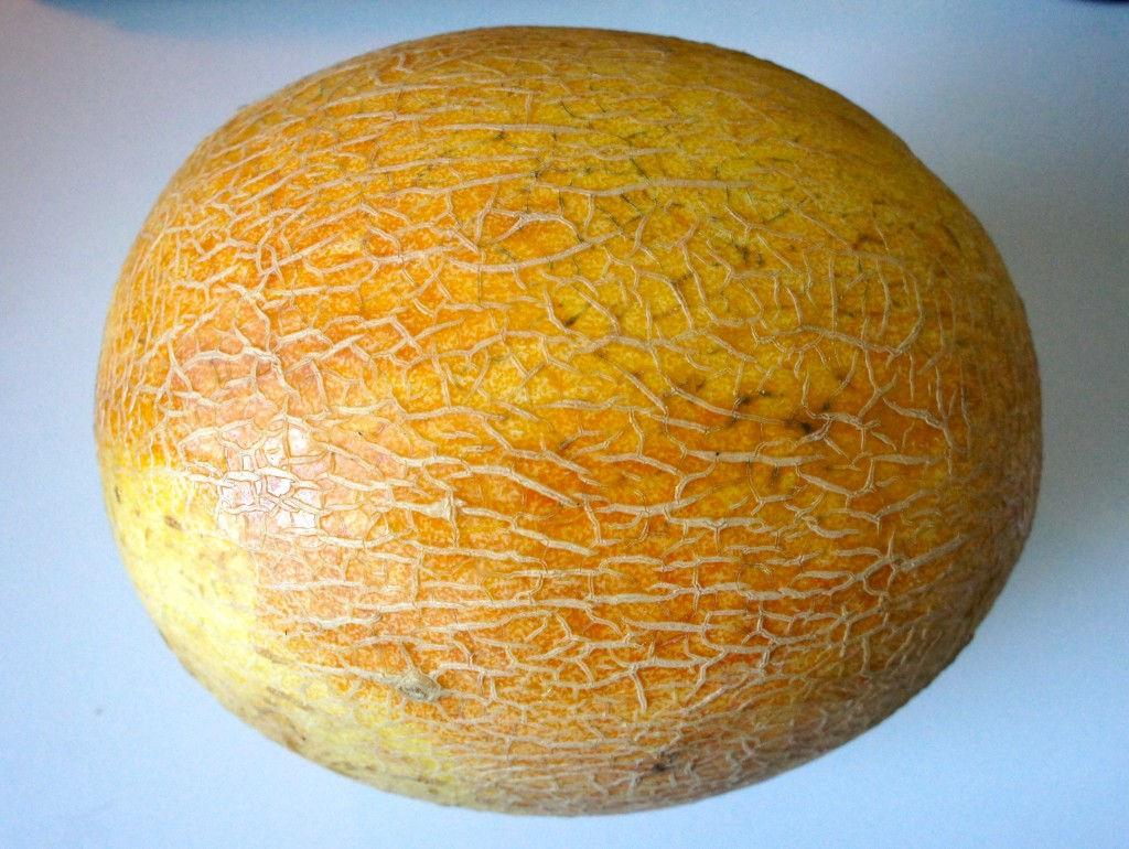 Melon from Chicago's Green City Market
