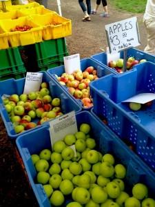 Illinois' Nichols Farm and Orchard stand