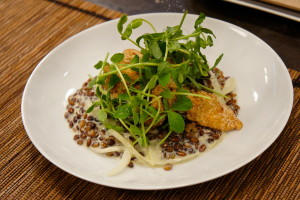 Paul Fehribach mushroom and creamed barley dish