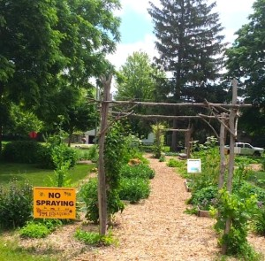 DeKalb, Illinois, Community Gardens