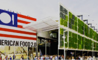 Italy & EXPO Milano: Basking in the Glow of Good Food
