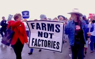 Willie Nelson marching in support of family farms