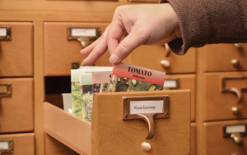Many seed exchanges are not only located in public libraries, but use the drawers of old-style card catalogs to organize the seed packets. Photo courtesy of Ruralite Services.