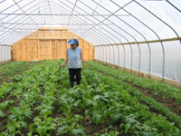 A photo of a high tunnel greenhouse from the USDA's Natural Resources Conservation Service website. Photo: USDA NRCS