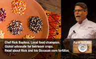 Rick Bayless and Oaxacan Corn: Thinking Globally While Acting Locally