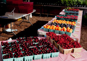 The color palette of a farmers market in season, such as the summer fruit from Michigan's Mick Klug Farm (above) and the vegetables from Indiana's Green Acres Farm (right), make Chicago's Green City Market a feast for the eyes as well as the belly.