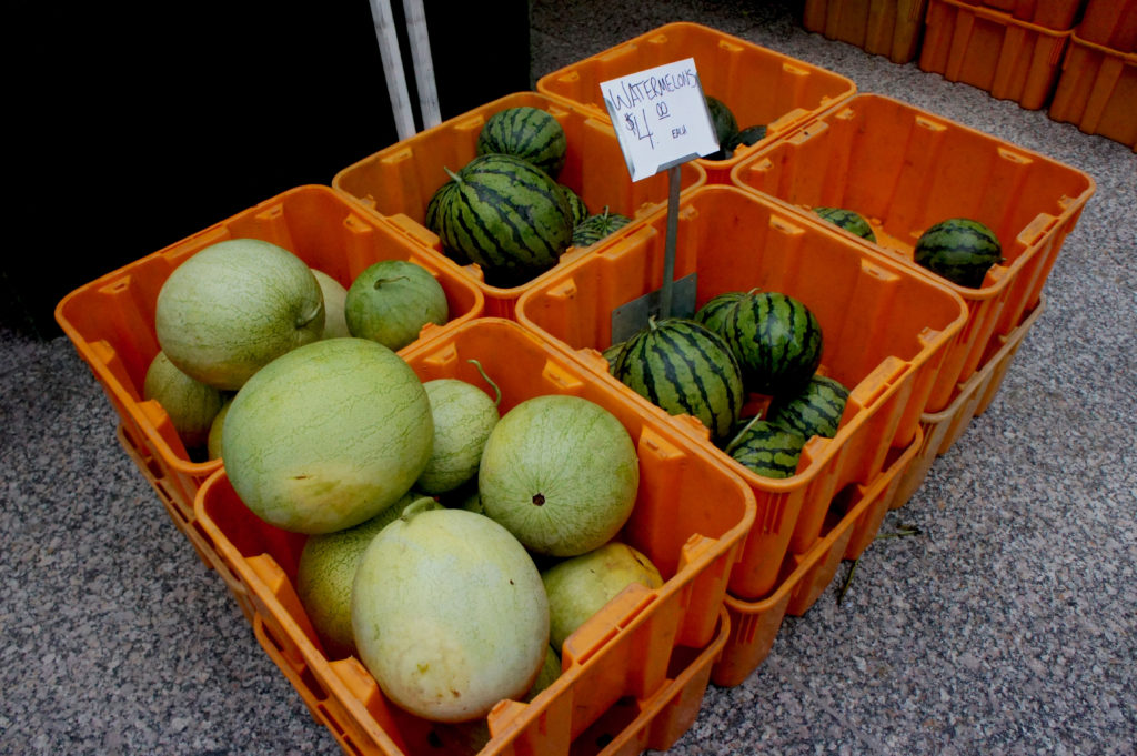 An epic example of saving money by buying big. All of those watermelons from Nichols Farm and Orchard, on sale at Chicago's Federal Plaza, are priced at $4. The small melons undoubtedly are excellent, but if you're looking to get more for your money, those great big ones that are more than twice the size are the way to go. Photo by Bob Benenson/FamilyFarmed.