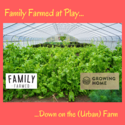 FamilyFarmed at Play