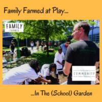 Familyfarmed At Play Money Does Grow In School Gardens For