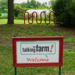 The Talking Farm
